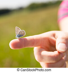 closeup of a hand with butterfly on it - closeup of a female...