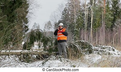 Lumberjack with cell phone at the fallen spruce