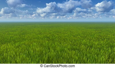 Motion to horizon through grass