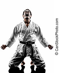 judoka fighter man silhouette - one judoka fighter man in...