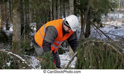 Lumberjack working with ax in forest