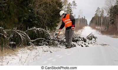 Lumberjack in the forest near tree in winter on road