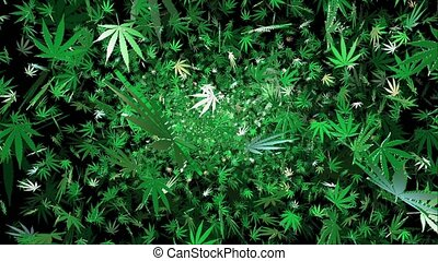 Flying cannabis leaves on a black background