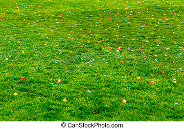 Easter Egg Hunt - A spring meadow with Easter eggs hidden in...