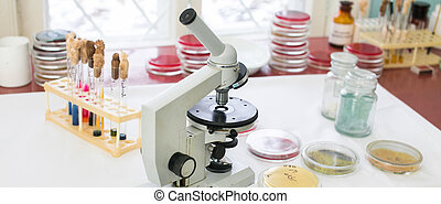 microscopio, en, Un, Laboratorio,