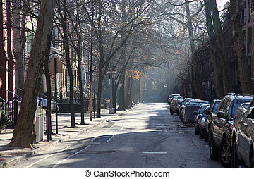 winterlight on brooklyn street during morning