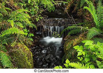 Beautiful waterfall on black rock