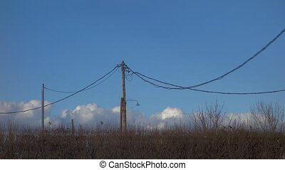 Natural fence with puffy clouds passing by. Electric cables...