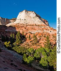 sandstone cliffs in zion national park