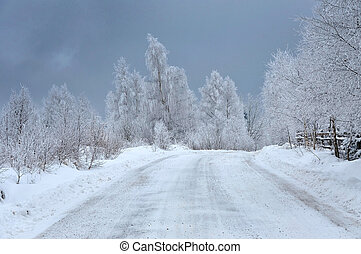 Frosty winter landscape, a snow covered road