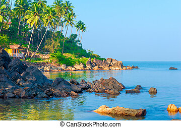 view for greeting card beach in Goa