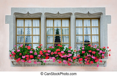 Old European Windows - Old European  windows with flowers.