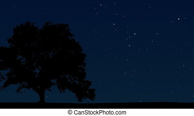 Night Sky 04 - Time lapse of a clear night sky with the...