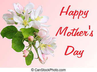 Apple blossom branch with Mothers Day greetings in English -...