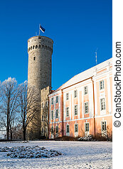 View of the tower Long Herman and the parliament building in...