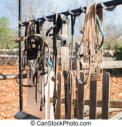 Horse bridles and other equipment in the stable