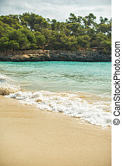 Image of beautiful beach with waves.