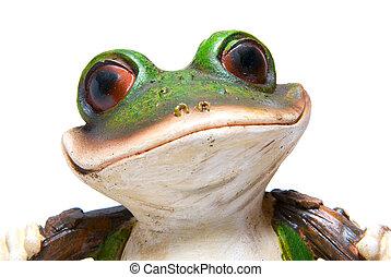 frog macro - Green tree  toy frog macro on white