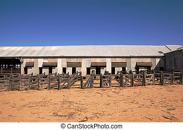 Abandoned shearing shed - Old abandoned wooden shearing shed...
