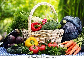 Assorted vegetables in wicker basket in the garden
