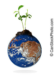 Baby plant growing from the earth over a white background....