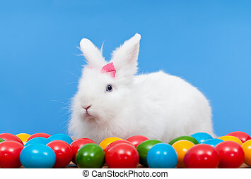 Fluffy white rabbit with pink bow guarding colorful eggs