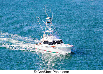 White Cabin Cruiser Over Blue Water - White cabin cruiser...