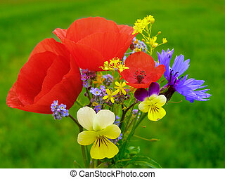 Wildflowers and red poppies