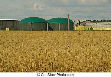 biogas plant 11