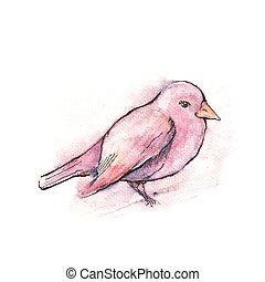 Illustration of hand drawn pink bird, watercolor style
