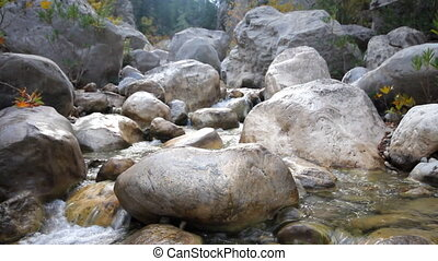 stream in mountains in autumn - Dry Creek flows between...