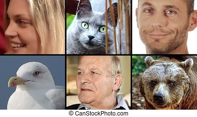Human and animal faces - Human people and animals portraits...