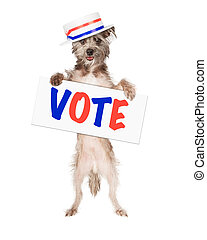 Dog Politician Vote Sign - Dog wearing politician hat...