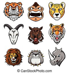 Animal Head Collection : Nine