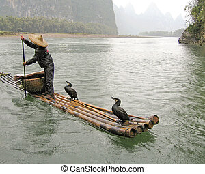 lone fisherman and his cormorants - typical chinese...