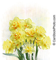 Daffodil Flowers - Digital Painting Of Yellow Daffodil...