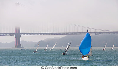 blue sailboat at the golden gate - sailboat with blue...