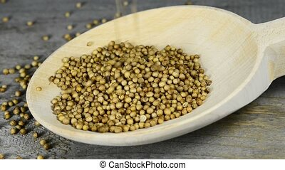 Coriander seeds falling down into a spoon