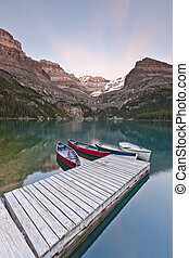 scenic view of lake ohara in Canada - scenic view of a boat...