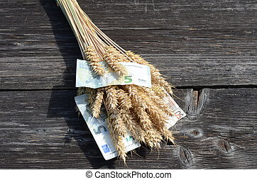 ripe wheat ears and euro money banknote concept - ripe wheat...