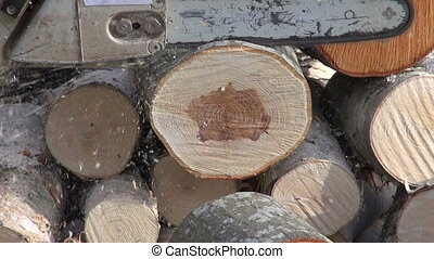 cutting firewood in farm yard with a chainsaw