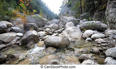 river in the mountains. Mountain gorge - river flows among...