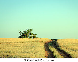 Rural road leading to a lonely oak tree in summer