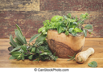 Different culinary herbs