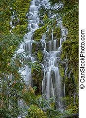 Proxy Falls in Oregon - Beautiful cascades of Proxy Falls in...