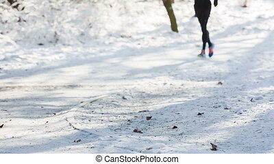 runner in park in winter with snow