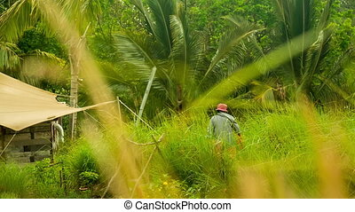 woman working in garden - farmers woman working in Garden at...