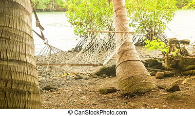 hammock next to river in mauritius - hammock between two...