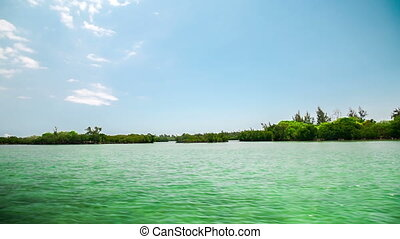 mangroves Mauritius Ile aux Cerfs - passing by the mongroves...