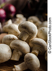 Mushrooms raw home-grown, dark lighting, advertisment place